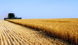 agricoltura%20americana_0.jpg