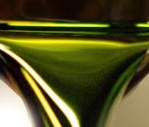 algae%20biomass%20bruxelles.png