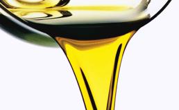olio%20bio%20gp_0.jpg