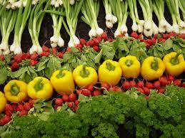 organic%20products.jpg