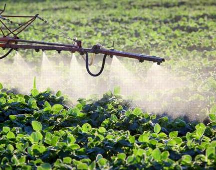 pesticidi%20nelle%20acque.jpg