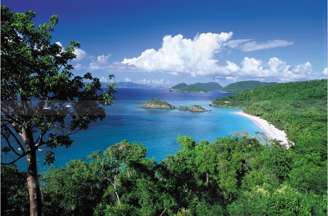 spiaggia%20caraibi%20greenplanet.jpg
