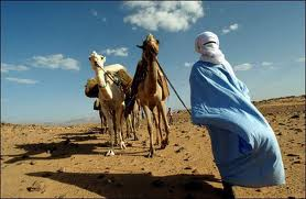 tuareg%20pericolo.jpg