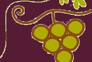 vino%20bio%20federbio_0.png