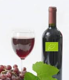 vino%20biologico_2.jpg