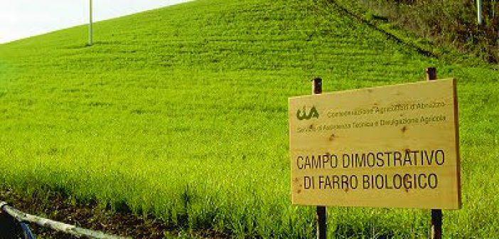 Bando Bio Abruzzo