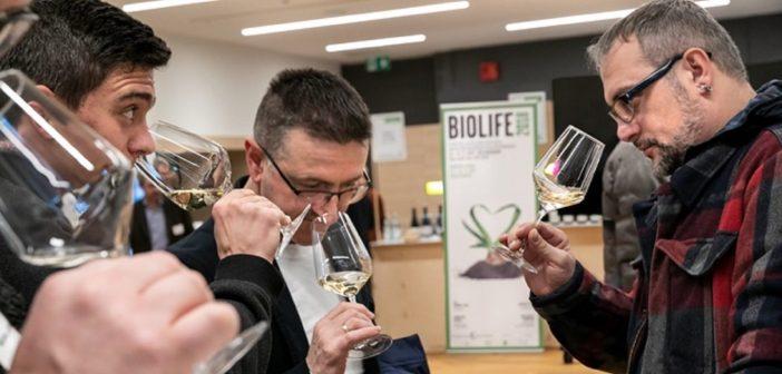 Bio-Wine-Festival-Foto-Marco-Parisi