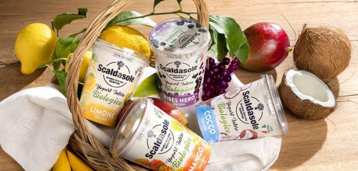 Gamma Yogurt Interi Frutta_Scaldasole_media