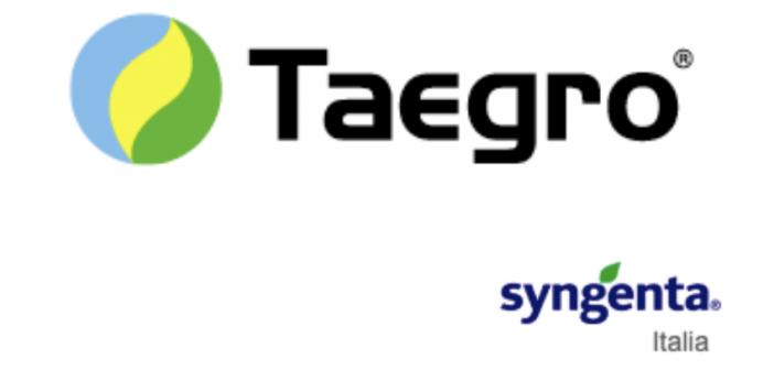Syngenta.Teagro