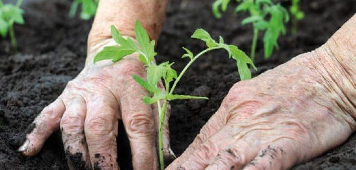 agricoltura-bio
