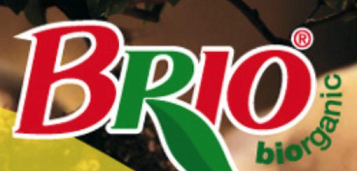 brio_0.jpg