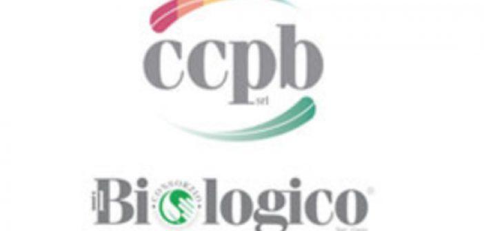 ccpb_6.jpg