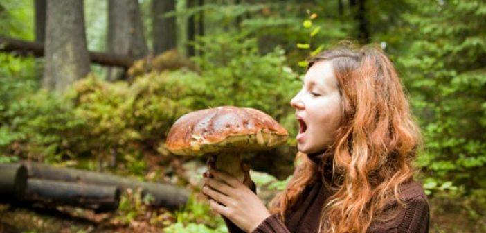 eating-big-mushroom