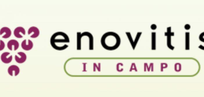 enovinis_0.jpg