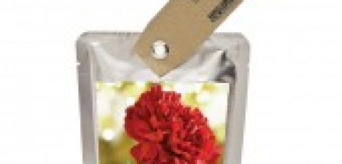 regalo-solidale-giardino-tascabile-garofano.jpg